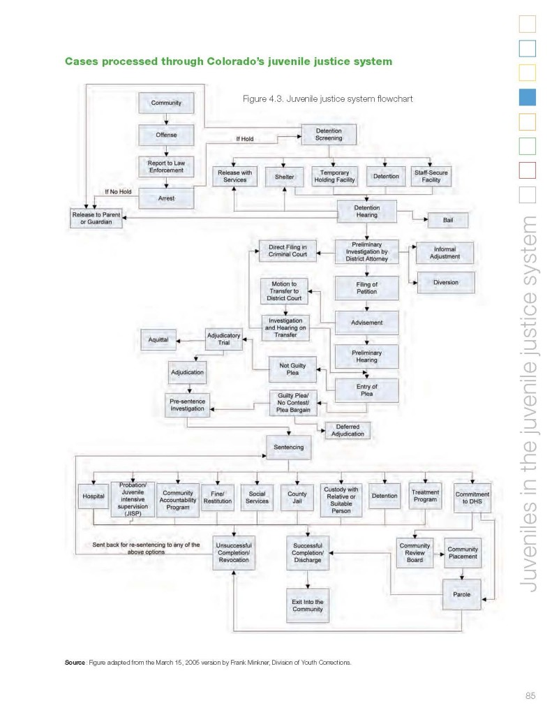 COLORADO JUVENILE COURT FLOW CHART